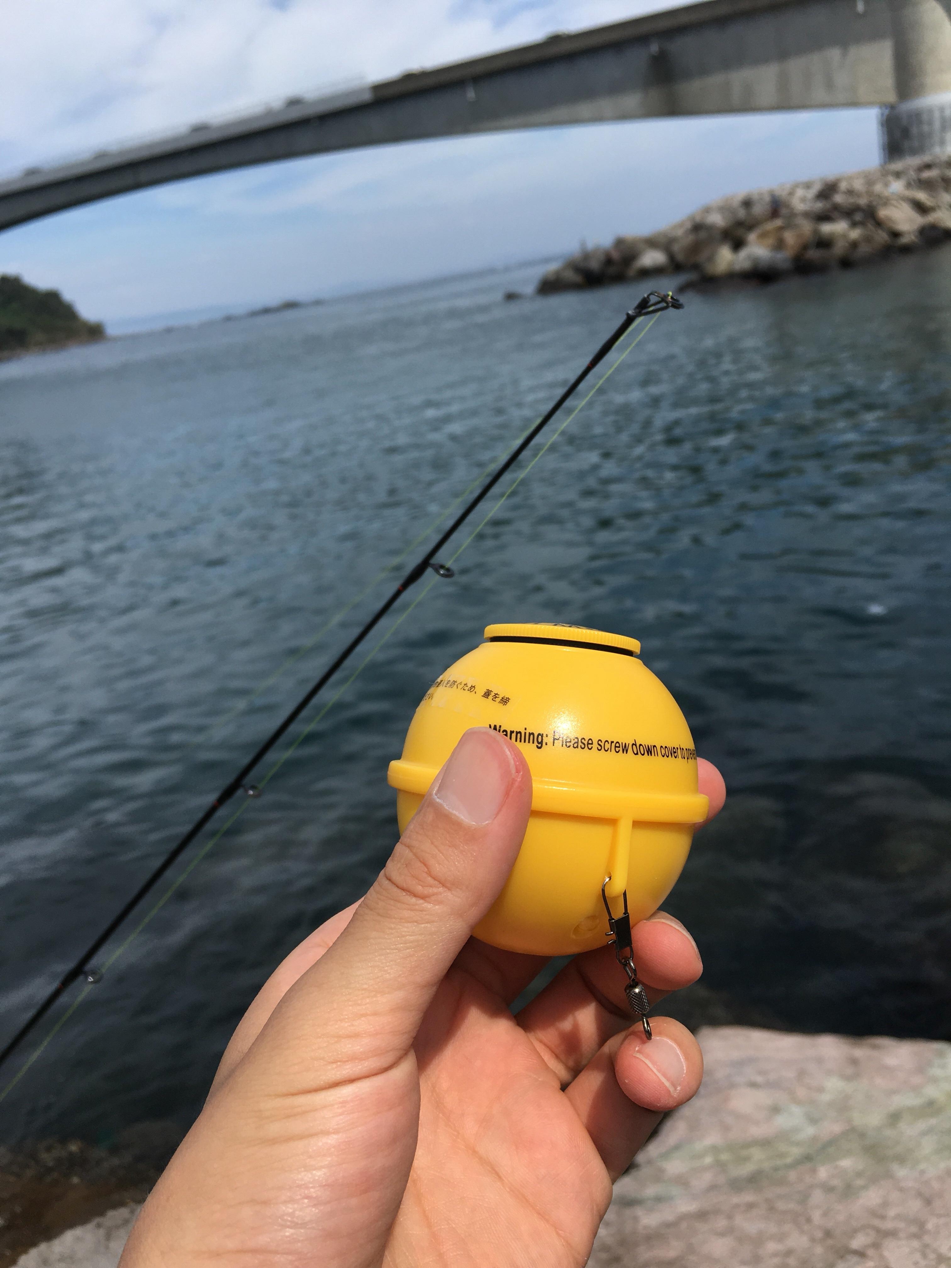 魚探を使ってみる